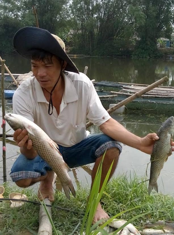 Huế: Hàng loạt cá nuôi lồng chết bất thường trên sông Bồ