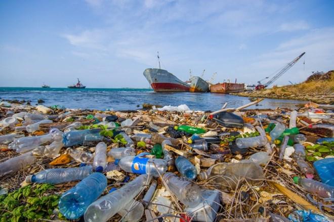Dòng hải lưu đem rác thải đến khiến Bắc Cực ô nhiễm nặng