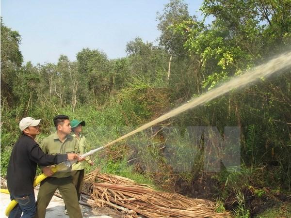 Hơn 11.000 ha rừng ở Cà Mau đang ở nguy cơ cháy cấp cao nhất