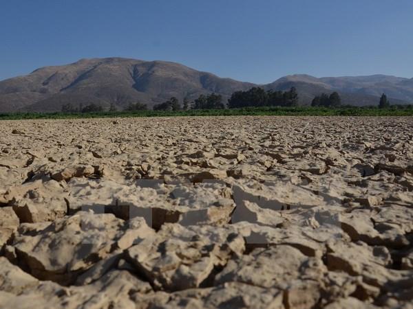 WMO cảnh báo hiện tượng El Nino quay lại trong năm nay