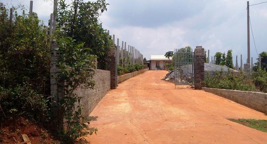 Mở trang trại, xây nhà trên đất lâm nghiệp