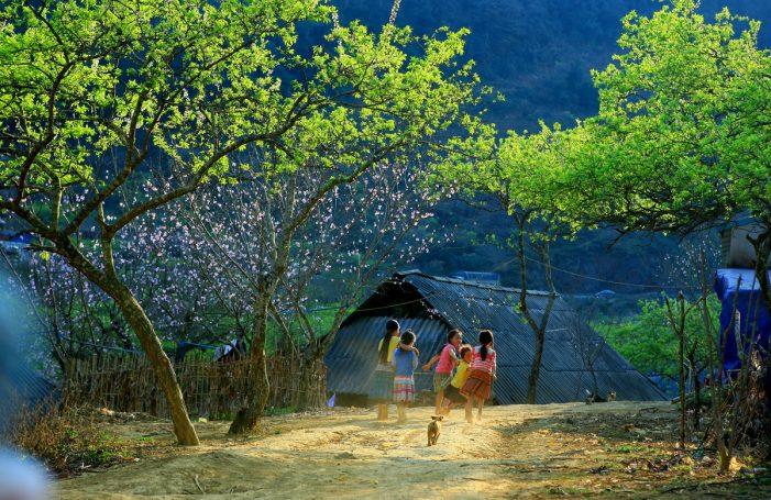 Quy hoạch Khu du lịch quốc gia Mộc Châu
