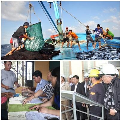 Quyết liệt giải quyết sự cố môi trường biển 4 tỉnh miền Trung