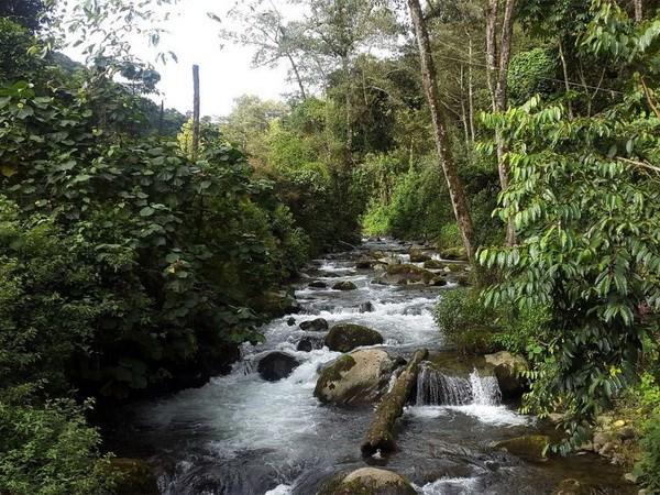 UNESCO công nhận khu dự trữ sinh quyển mới tại Costa Rica