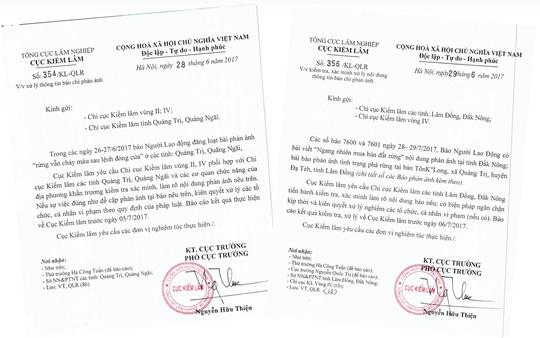 """Rừng vẫn """"chảy máu"""" sau lệnh đóng cửa: Không có vùng cấm trong xử lý vi phạm"""