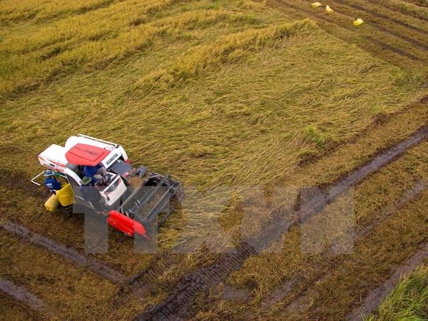 Hạn hán de dọa hơn 12.000ha lúa vụ hè thu thiếu nước