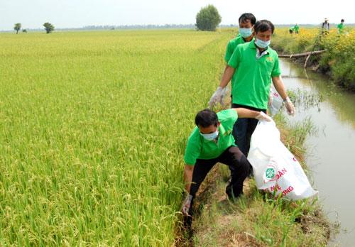 """Nông sản khó xuất vì đồng ruộng """"ngập"""" vỏ chai thuốc BVTV"""