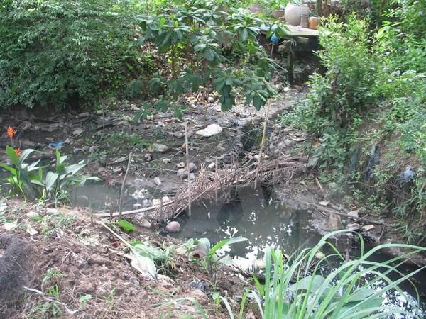 Xử phạt một công ty 876 triệu đồng do xả thải ra sông Hậu