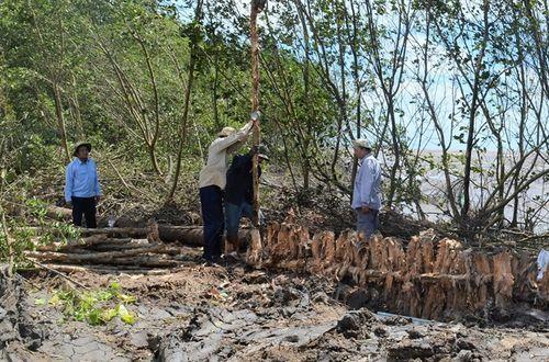 Cà Mau: Sạt lở có nguy cơ gây vỡ đê ven biển Tây