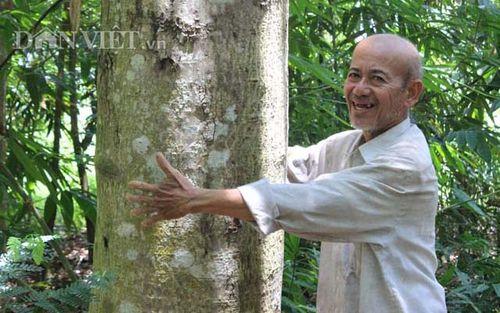 Lạ đời: Hơn 20 năm cực nhọc trồng 200 ha rừng mà không… bán gỗ