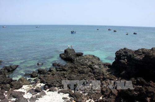 Tăng cường quản lý Khu bảo tồn biển Lý Sơn
