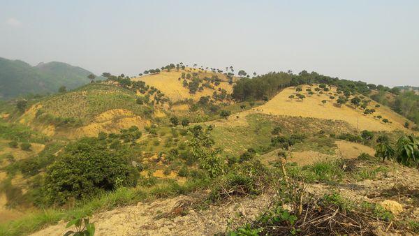 Đặc điểm đất đai và vấn đề sử dụng đất cho vùng sản xuất nông nghiệp hàng hóa tại Tây Bắc