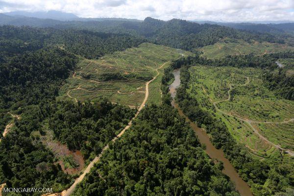 Chính sách của ADB: Phá hủy đi trước, bảo tồn đi sau
