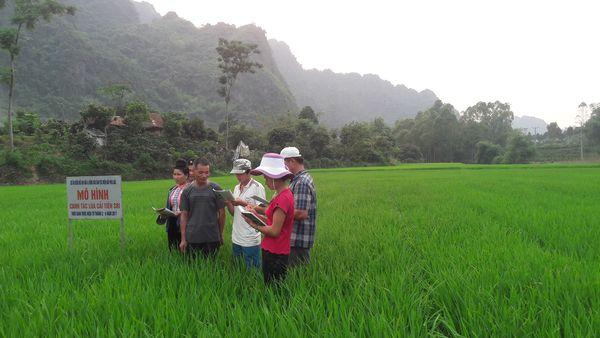 Ứng dụng thực hành nông nghiệp ứng phó BĐKH ở Tây Bắc: Thực trạng, khó khăn và đề xuất giải pháp khắc phục
