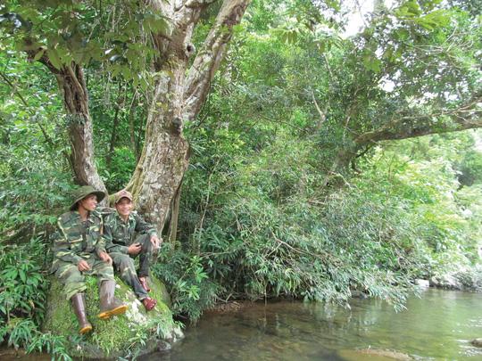 """Dồn sức giữ rừng: """"Biệt đội"""" rừng xanh"""