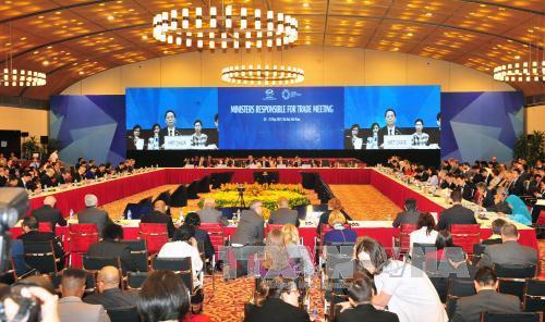 APEC 2017: FTAAP là kết quả tất yếu của tiến trình hội nhập
