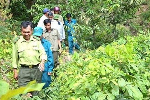 9 ngày mắc kẹt trong rừng khi truy đuổi lâm tặc