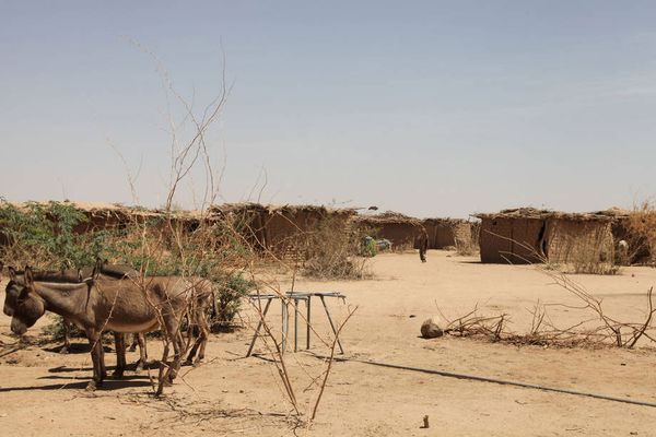 Hạn hán nghiêm trọng tại khu vực Nam châu Phi