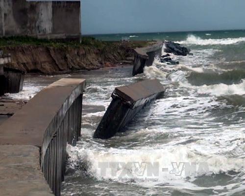 Quảng Nam triển khai nhiều giải pháp ứng phó biến đổi khí hậu
