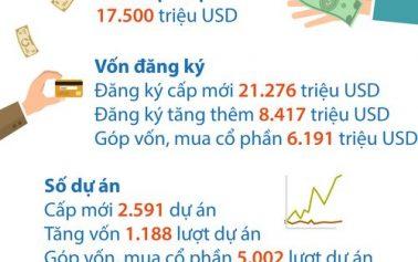 Đầu tư trực tiếp nước ngoài năm 2017