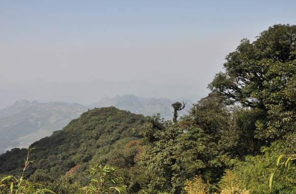 Thành lập Vườn quốc gia Phia Oắc – Phia Đén (Cao Bằng)