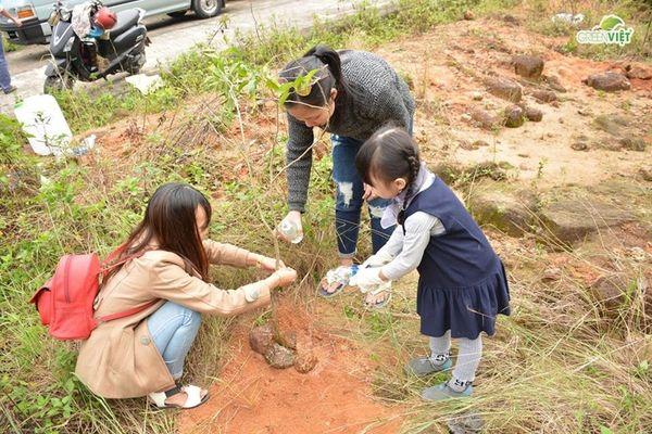 Đà Nẵng: Trồng cây làm giàu rừng, phục hồi sinh cảnh ở bán đảo Sơn Trà