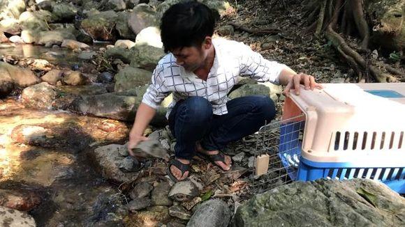 Thả 27 cá thể động vật về rừng ở Kon Tum