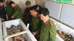 """""""Khai quật thế giới ngầm"""" buôn bán động vật hoang dã ở Việt Nam – Kỳ 6"""