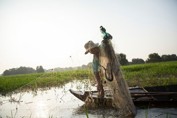 Bảo tồn và quản lý bền vững tài nguyên nước