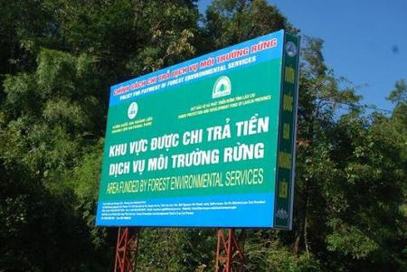 Sử dụng tiền dịch vụ môi trường rừng