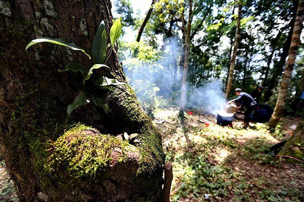 """Xem các """"vị thần"""" làm lễ tục của rừng thiêng"""