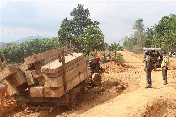 """Rừng liên tiếp bị tàn sát ở Tây Nguyên: Chỉ xử lý """"nhẹ nhàng"""" cán bộ"""