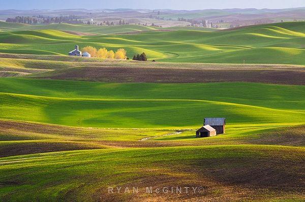Vùng đất có những thảm cỏ đa sắc màu đẹp hơn tranh sơn mài