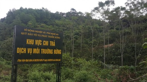 Đề xuất mức chi trả dịch vụ môi trường rừng