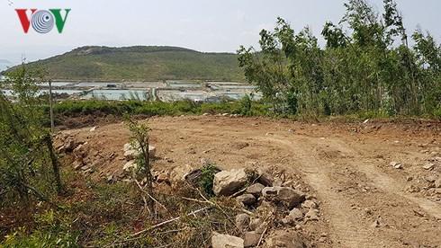 Chặt phá rừng, lấn chiếm đất khu vực hình thành đặc khu Bắc Vân Phong