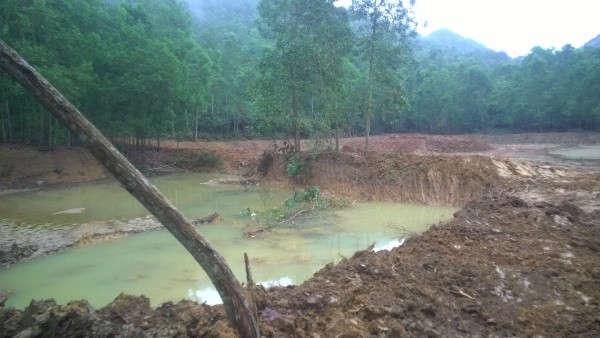Thanh Hóa:Phải xử nghiêm hành vi vi phạm rừng đặc dụng