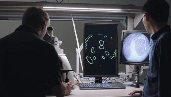 Google ứng dụng công nghệ thực tế ảo để phát hiện tế bào ung thư