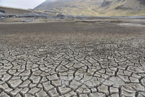 Phục hồi đất suy thoái trước khi quá muộn