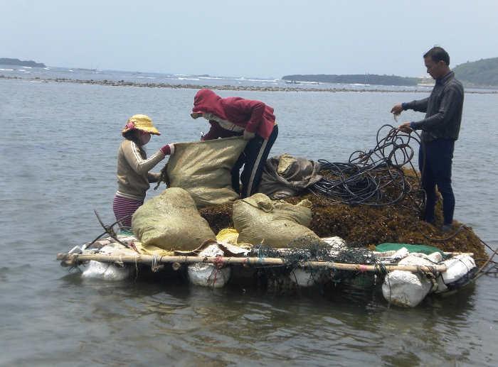 Nhân rộng mô hình tổ tự quản bảo vệ tài nguyên, môi trường biển