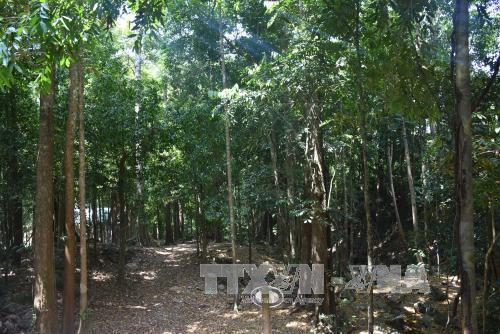 Ứng dụng công nghệ vào quản lý, bảo vệ rừng ở Vườn quốc gia Chư Mom Ray