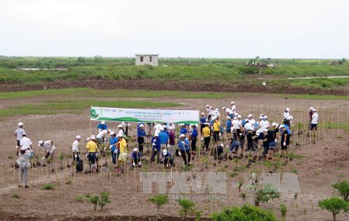Tổ chức phi chính phủ nước ngoài hỗ trợ phát triển bền vững