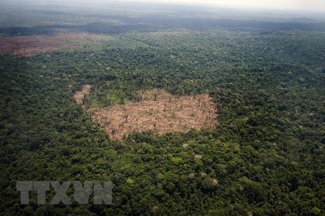 Trung Quốc, Campuchia tăng hợp tác bảo vệ môi trường và hệ sinh thái