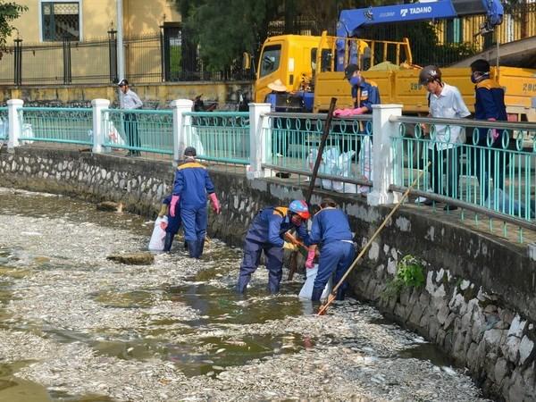 Hơn 300kg cá chết tại hồ Tây sau đợt nắng nóng, bốc mùi khó chịu