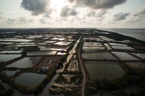 Mê Công cần thiết lập khung ĐTM xuyên biên giới đối với các dự án trong lưu vực