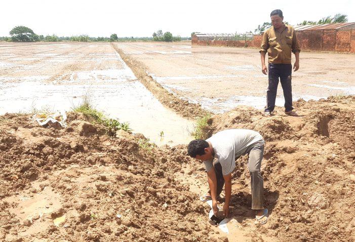 Khai thác đất mặt ruộng vẫn tiếp diễn ở Sóc Trăng