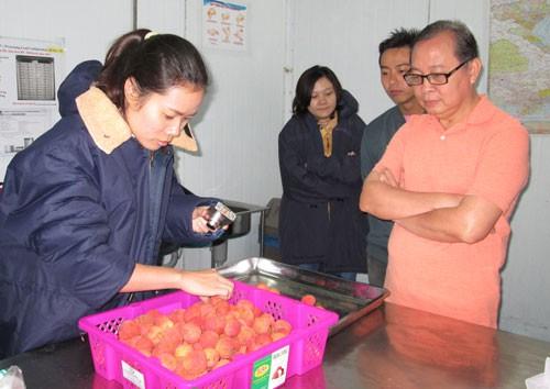 Áp lực từ cuộc chiến thương mại Mỹ – Trung: Nông sản Việt sẽ ra sao?