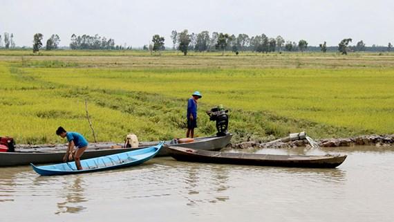 Đồng bằng sông Cửu Long: Có thể tràn đê bao