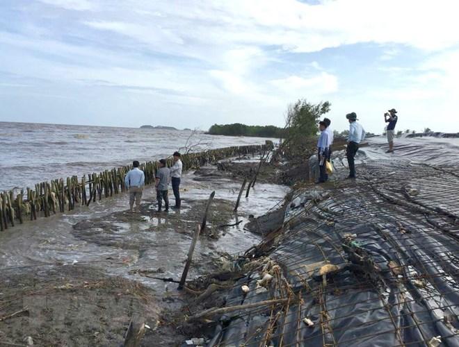 Trên 60 tỷ đồng xây dựng kè hộ đê khẩn cấp ngăn vỡ đê biển Tây