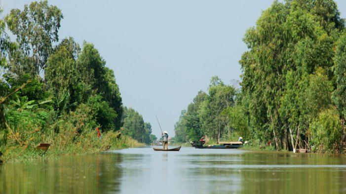 Quy hoạch vùng Đồng Tháp Mười trở thành vùng trữ nước ngọt cho khu vực đồng bằng sông Cửu Long 