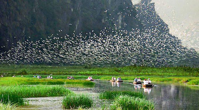 Khuyến khích đầu tư bảo tồn, sử dụng bền vững đất ngập nước